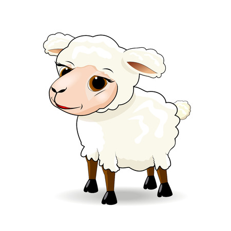 Cartoon sheep on white background.