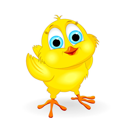Little yellow chick on a white background. Cartoon chicken. Illustration