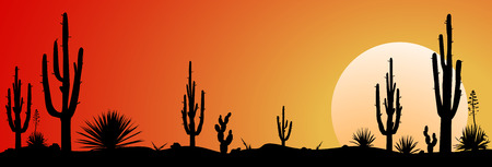 Sunset in the Mexican desert. Silhouettes of cacti and plants. Desert landscape with cactuses. Illustration