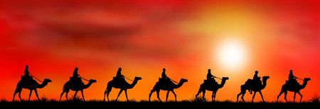 Silhouettes of riders on camels on the background of sunset.