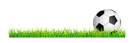 Banner with soccer ball and grass lawn. Soccer ball on a green grass lawn.                                                                                                                                                                                                                                   Иллюстрация
