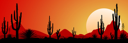 Sunset in the Mexican desert. Silhouettes of stones, cacti and plants. Desert landscape with cacti, the stony desert.