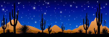 A stony desert at night. Desert landscape, night scene. Desert with cactuses against the background of the night starry sky. Illustration