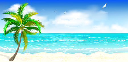 Landscape of the tropical shore. Landscape of the sea shore with palm tree. Sea shore with palm tree, blue sky and white clouds. Palm tree against the background of the sea, sky and clouds. Illustration