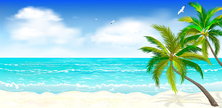 Landscape of the tropical shore. Landscape of the sea shore with palm trees. Sea shore with palm trees, blue sky and white clouds. Palm trees against the background of the sea, sky and clouds. Illustration