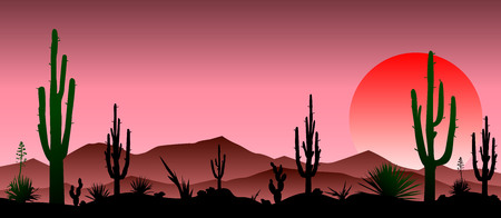 Sunset in the red stony desert.  Silhouettes of stones, cacti and plants. Desert landscape with cacti. The stony desert. Ilustração