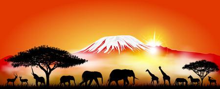 Siluette degli animali selvatici della savana africana sullo sfondo del monte Kilimangiaro.