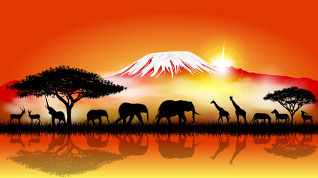 Silhouettes of wild animals of the African savanna. 스톡 콘텐츠