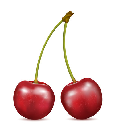 Two red cherry berries on a white background. Illustration
