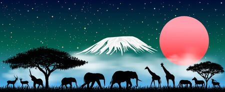 Silhouettes of wild animals of the African savanna. African animals at night against the backdrop of Mount Kilimanjaro. Starry sky and clouds. 일러스트