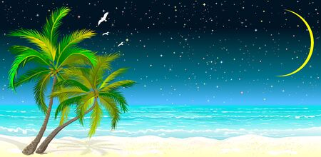 Tropical seascape. Palm trees on the sandy shore against the background of the sea and the night starry sky.                                                                                                                                         일러스트