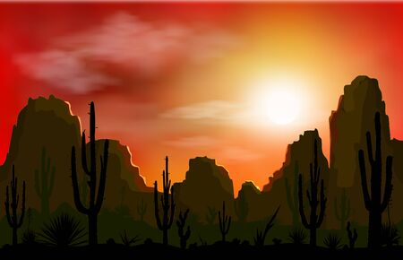 Stone desert, mountains. Silhouettes of stones, cacti and plants. Desert landscape with cacti. Sunset.