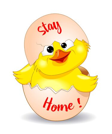Cartoon chick peeking out of an eggshell. Little yellow chicken on white background.