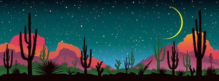 Landscape with various cacti against the backdrop of mountains and the night starry sky. 일러스트