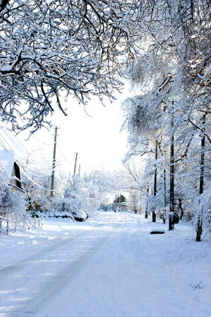 Winter rural landscape. Snowy street. Winter frosty morning. Rural houses and trees covered with snow.