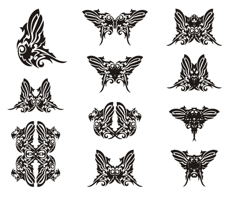 Butterfly wings from parrot form. Character set of butterflies in tribal style for your design