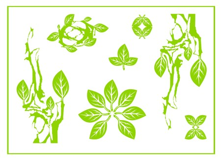 Abstract green leaf, spa, tribal symbol, yoga, circle leaf sing, green design. Leaves on a white backdrop