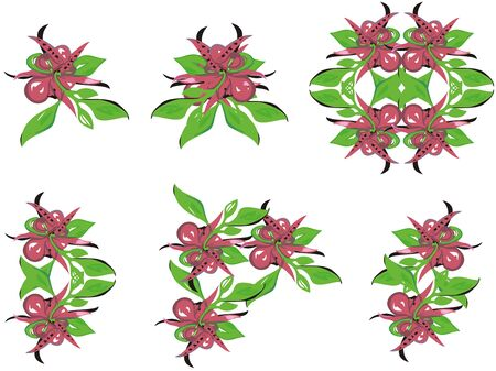 Red and green flowers set. Blossoming flowers such as a orchid on a white background for your design