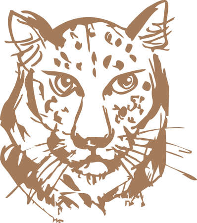 Leopard Head Sketch in brown color on a white backdrop. Grunge leopard head for backgrounds and textures, prints and posters, textiles and wallpaper, tattoos, emblems, logos, stikers, etc.