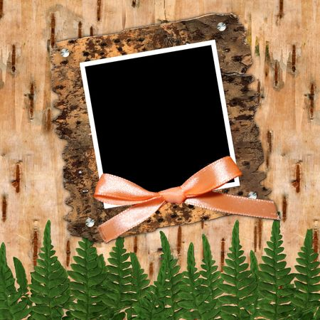 crusty: Frame with bow to birchen bark Stock Photo