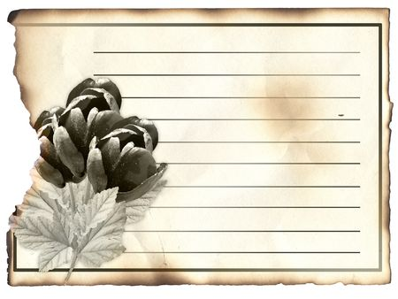 post card: Blank post card for condolence, old paper