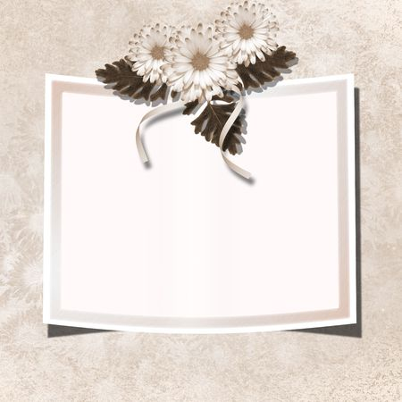 ornamente: Page for photo or invitation on the vintage background.