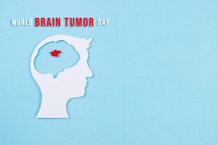 World Brain Tumor Day. Top view of cut paper brain with red tumor on light blue background. Copy space for advertisers.