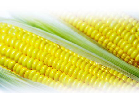 Fresh corn.