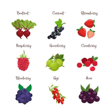 Set of colorful cartoon berries: blueberry, blackberry, cherry, raspberry, rcurrant, strawberry. Vector flat icon illustration, isolated on white Vektorgrafik