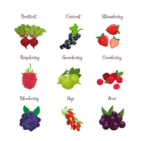 Set of colorful cartoon berries: blueberry, blackberry, cherry, raspberry, rcurrant, strawberry. Vector flat icon illustration, isolated on white Illustration