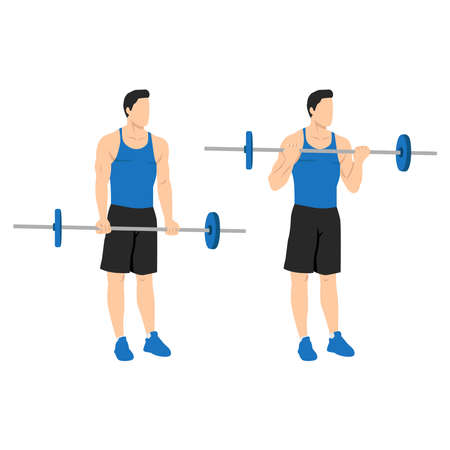 Man doing Barbell curls exercise. Standing bicep curl.Arm workout. Flat vector illustration of a fitness man isolated on white background Vettoriali