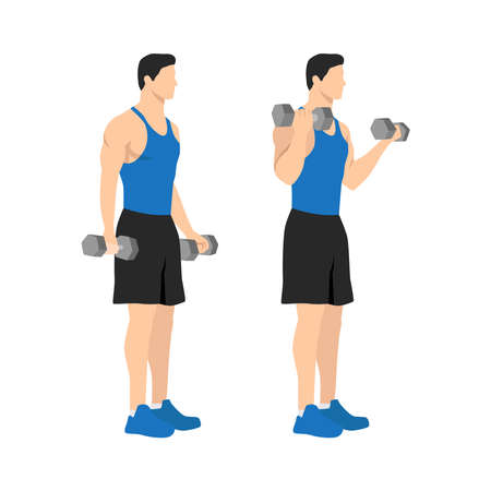 Man doing standing dumbbell bicep curls. Flat vector illustration isolated on different layers. Workout character