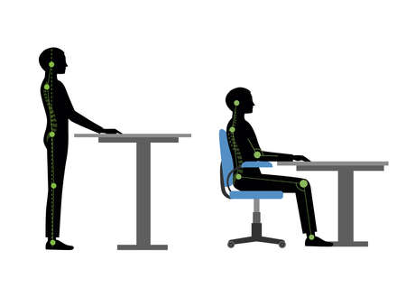 Correct and incorrect back posture for reading and writing, standing and sitting cartoon vector illustration isolated on white background. Portrait of man showing correct and incorrect back posture