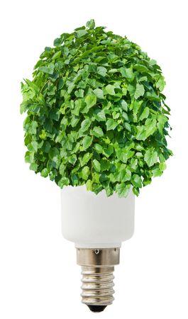 concepts energy-saving lamp