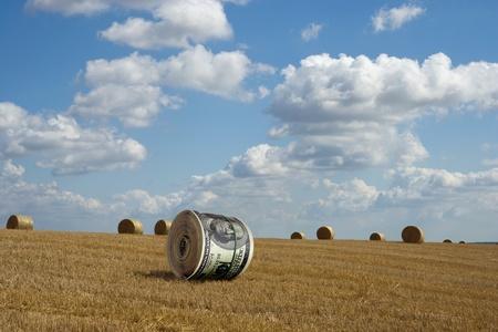 dollar roll on the cleaned wheaten field