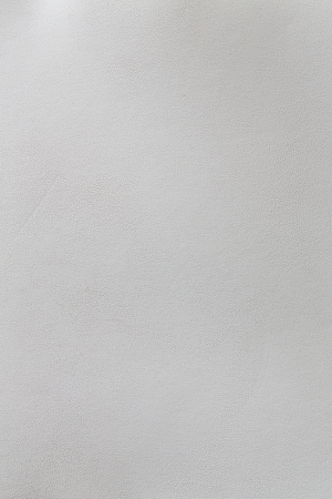 Natural white leather seamless texture photo