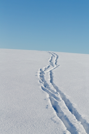 Ski Track in the snow downhill Stock Photo - 17960578