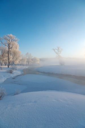 Winter landscape of tree on the edge of the river on a foggy  morning  Stock Photo - 17960654