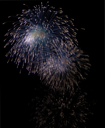 Beautiful fireworks on the black sky background.