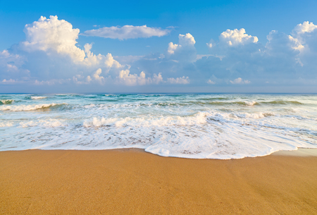 summer beauty: beach in morning time