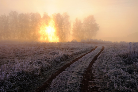 Foggy winter sunrise of the first frost, frost on trees and grass, morning Stock Photo