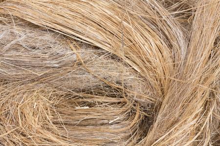 raw flax fiber  Stock Photo