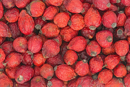 top view of dried berries rose hips   Stock Photo