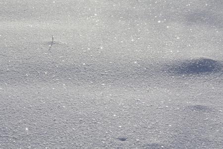 Shiny silver snowflakes on brilliant snow Stock Photo