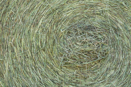 texture of dry grass in a bale
