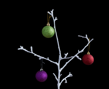 christmas balls on white dry branch, isolated on black
