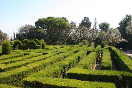 muddle: Hedge design in park Stock Photo