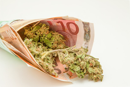 Marijuana and euro notes photo