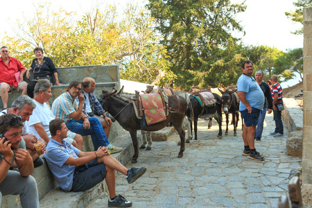24 month old: Village centre of Lindos Rhodes is a starting point for a Donkey ride, led by a guide you can either climb to the Acropolis or go down to the Bay