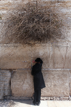 siddur: Orthodox Jewish man pray at the western wall. The western wall is an exposed section of ancient wall situated on the western flank of the Temple Mount.